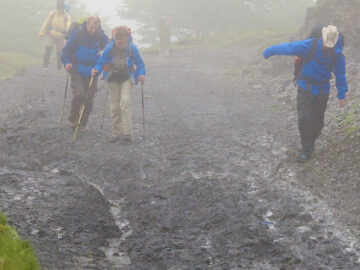 four people in hiking clothes walking on a muddy stretch of the Camino in the Pyrenees